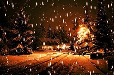 Cant wait for christmas