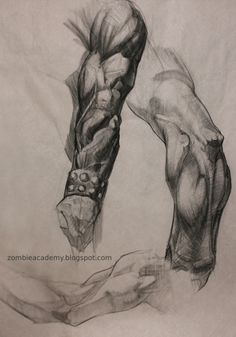 Bridgman and Frazetta anatomy study