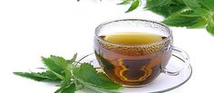 Mit einem Tee gegen Rheuma - #Tee #Rezept #Heilpflanze #Heilpraktiker…