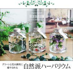 グリーンと花の調和に癒やされる 自然派ハーバリウム