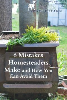 Having a homestead, raising your own food, ensuring that your animals are fed wholesome, GMO free feed which then will nourish you, is an extremely satisfying lifestyle. With some foresight you can avoid many of the mistakes that cripple a homestead venture and cause unhappiness, sending the defeated homesteader back to the city, broke and wounded. The following 6 mistakes can be avoided with a little planning to ensure that your homestead is a blessing to you and your family for many…