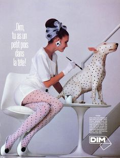 Dim (Tights) 1986 Stockings Hosiery, Bull Terrier Dog
