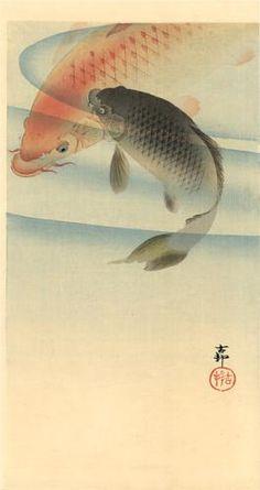 Two koi carps Ohara Koson · 1910 Koi Art, Fish Art, Japanese Koi, Japanese Prints, Ohara Koson, Japan Painting, Art Japonais, Japan Art, Woodblock Print