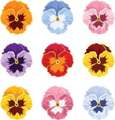 Top 60 Pansy Clip Art, Vector Graphics and Illustrations - iStock Flower Line Drawings, Art Drawings, Illustration Vector, Illustrations, Pansy Tattoo, Flower Tattoos, Art Floral, Watercolor Flowers, Watercolor Art