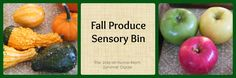 Fall Produce Sensory Experience from The Stay-at-Home-Mom Survival Guide: Infant Activities for Autumn