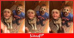Snapchat face swap boy meets dog …  - #Viral #Trending #Videos #Video #Clips #Picture #Pictures #Pic #Pics #Funny