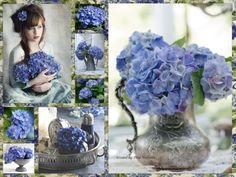 ❧ Collages de Thea Veerman ❧ Hydrangea Blues....by Thea Veerman