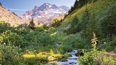 Mt Hood-Perfect 10: North America's 10 Most Memorable Hikes | Backpacker Magazine