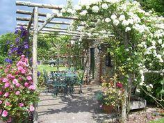 Terrasse Pergola Begrünen Kletterpflanzen Eisen Möbel | Flowers ... Gartenlaube Pergola Begrunen