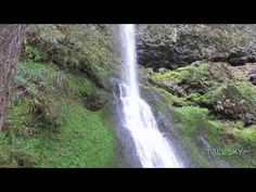 Virtual Hike to Winter Falls, Silver Falls State Park, Oregon