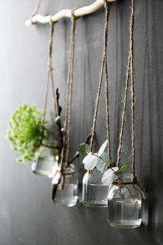 decoration bocal en verre, pots suspendus, plantes vertes