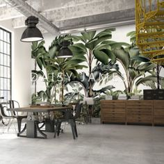 Exclusive wallcovering made to fit THE PARC by Daisy James at Behangfabriek Palm Wallpaper, Fabric Wallpaper, Plant Drawing, Tropical Decor, Restaurant Design, Designer Wallpaper, Scandinavian Design, Daisy, Wall Decor