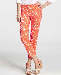 Floral Print Carnegie Cropped Pants