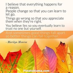 I believe that everything happens for a reason. People change so that you can learn to let go, things go wrong so that you appreciate them when they're right, you believe lies so you eventually learn to trust no one but yourself, and sometimes good things fall apart so better things can fall together. ― Marilyn Monroe . . . #motivationalquotes  #quotes #philosophy #dailyquote #quoteoftheday #quotestagram #quotestags #quote #inspiringquotes #positivevibes #positivity #positivewords #wisewords…