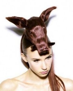 12 Best Hairstyle Animal Shape Images In 2012 Amazing Hairstyles