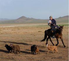 misty-elek-mongolian-horseman11.jpg 1,188×1,047 pixels