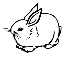 bunny rabbit coloring pages activities