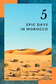 Planning a short trip to Morocco? If youre heading to this incredible country for a few days heres what you should do to make the most of your trip. In this 5 day-itinerary in Morocco youll get the best as well as a fun Sahara desert experience. Visit Morocco, Morocco Travel, Africa Travel, Travel Guides, Travel Tips, Travel Articles, Travel Advice, Morocco Itinerary, Short Trip