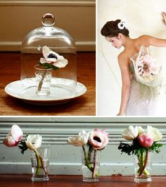 Tips for caring for anemones for DIY brides from WholeBlossoms.com