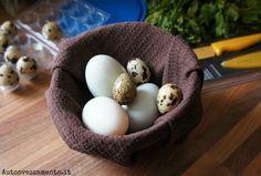 svezzamento uova, uova, duck egg, uova anatra, uova quaglia, quail egg