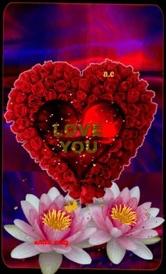 Beautiful Love Pictures, Beautiful Gif, Hello Beautiful, Beautiful Flowers, Good Morning Roses, Good Morning My Love, Monsieur Jean, Love Heart Images, Shiva Lord Wallpapers
