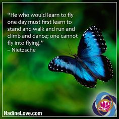 He who would learn to fly one day must first learn to stand and walk and run and climb and dance; one cannot fly into flying. – Nietzsche http://NadineLove.com