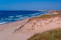 Sable Island is a year-round home to approximately five people!