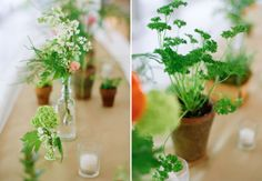 flowers in bottles and potted plant wedding centerpieces   photo: emily steffen