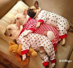 Way too cute...