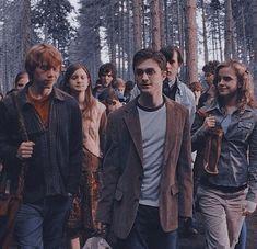Harry James Potter, Saga Harry Potter, Mundo Harry Potter, Harry Potter Pictures, Harry Potter Universal, Harry Potter Characters, Harry Potter World, Hogwarts, Draco Malfoy