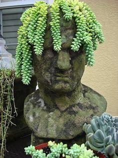 those burro's tails dreads LOL Inspire Bohemia: Stoneface Creations: Stone Head Garden Planters Magic Garden, Garden Whimsy, Garden Art, Garden Design, Garden Ideas, Garden Club, Backyard Ideas, Face Planters, Garden Planters