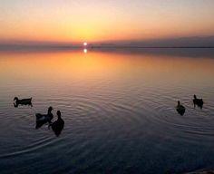 #mutluakşamlar #happyevening  #sunset #günbatımı #mersin #turkey by elfinzeyno
