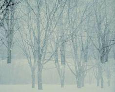 "Saatchi Art Artist Brigitte Thériault; Photography, ""Entre-Nous"" #art"