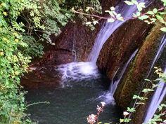 https://flic.kr/p/yB81o7   Waterfall in the park near our housesit - lovely! ##upsticksandgo #waterfall #exploring #italia #formello #bushwalking #travel #travelingtheworld #michfrost #instagood #instaitalia #naturephoto