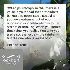 When you recognize that there is a voice in your head that pretends to be you... Eckart Tolle