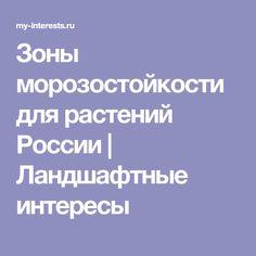Зоны морозостойкости для растений России | Ландшафтные интересы