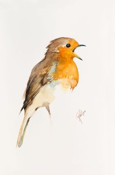 Buy Robin (Erithacus rubicola), Watercolour by Andrzej Rabiega on Artfinder. Discover thousands of other original paintings, prints, sculptures and photography from independent artists.