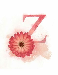 Letter Z, Zinnia, Nature Alphabet