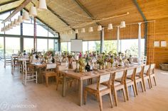 Wedding reception decor at Old Mac Daddy. Raw wood chairs and tables, vibrant pink and gold elements.