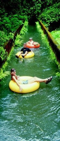 Mountain tubing adventure down the long irrigation ditches of an old sugar plantation in Kauai, Hawaii • photo: courtesy of Kauai Backcountry Adventures
