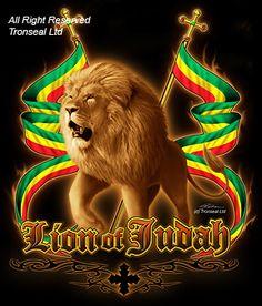 The Lion of Judah is coming. Can you hear Him roar? Jah Rastafari, Rastafari Quotes, Fotos Do Bob Marley, Bob Marley Art, Rasta Art, Rasta Lion, Haile Selassie, Iron Lion Zion, History Of Ethiopia