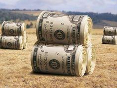 """В діючій угоді з МВФ є зобов""""язання переглянути систему управління земельними ресурсами - експерт. """"Україна — це землеробська нація, тому політики постійно спекулюють на цьому. #time_ua #новини #Україна #Київ #новости #Украина #Киев #news #Kiev #Ukraine  #EU #Політика"""