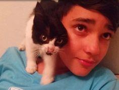Zorro the kitten makes acquaintance with his new entourage