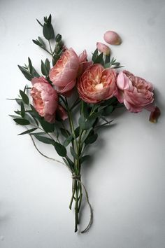 my fave. peonies.