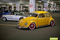 Beetle..
