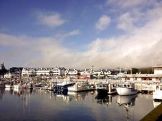 Pillar point Harbor in December