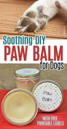 Homemade Dog Food Make a homemade paw balm for dogs to soothe their dry and irritated feet! Protect your dog's paws in summer, winter, or all year long with this natural paw balm made with soothing essential oils. Diy Dog Treats, Homemade Dog Treats, Dog Treat Recipes, Dog Food Recipes, Summer Dog Treats, Frozen Dog Treats, Dog Biscuit Recipes, Bacon Recipes, Food Tips