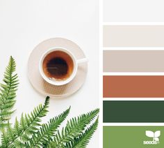 Color Served | design seeds | Bloglovin'