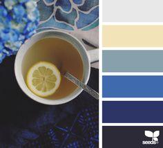 { color serve } image via: @agata_louie  #color #palette #designseeds #seeds #seedscolor #yellow #cobalt #blue