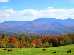 Trapp Family Lodge (Stowe, Vermont)